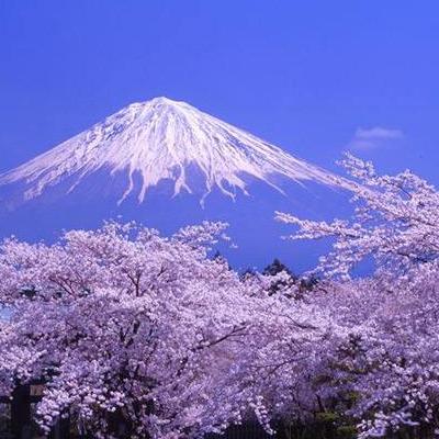 日本国庆节是几月几日?日本2个国庆日庆祝方式有哪些