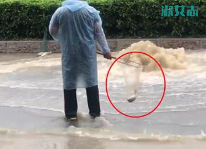广州雨后路人当街捕鱼